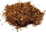 burley_tobacco