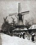 Lelie windmill